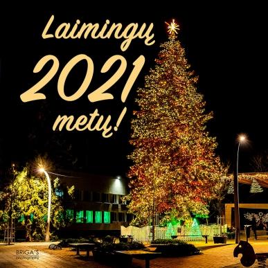 Gražių švenčių ir laimingų 2021 metų!